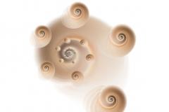 GOLDEN-SPIRAL-series-UNIVERSE-2013-Pigment-print-100x100cm-50x50cm