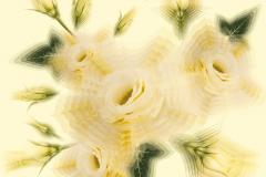 FRACTAL 2 series UNIVERSE, 2015 Pigment print, 100x100 сm